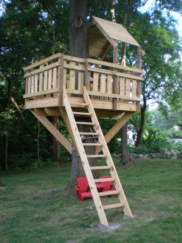 Basic treehouse design