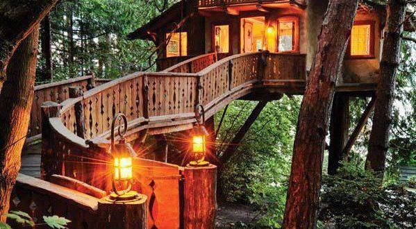 resthouse treehouse ideas