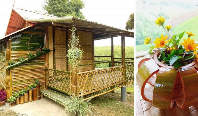 Beautiful Native House Made of Bamboo, Plus Bamboo Décor Ideas