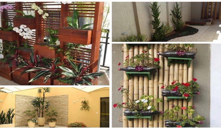 Cool Ideas to Decorate Your Outdoor & Indoor Spaces with Plants