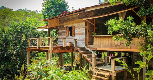 Resort-Style Wooden Houses with Lots of Great Designs to Choose for Your Home