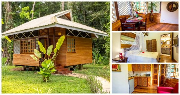 1-Bedroom Caribbean Style Wooden House & Stylish Jungle ...
