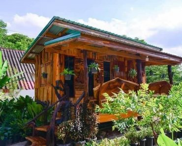 Native House with Dreamy Look, Gorgeous Wood Materials