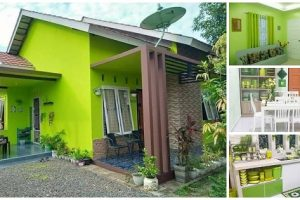 Lime Green Cottage with 2 Bedrooms