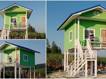 Tall House with Cottage Design